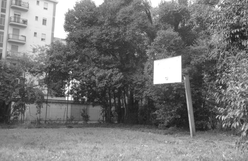 Canestro all'aperto - Liceo Franchetti Mestre - Venezia