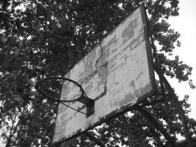 Il tabellone con un ramo appoggiato sulla parte superiore